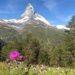 Hoch über dem Alltag | Riffelalp Resort Zermatt